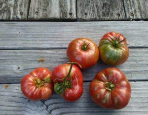 How to make fresh tomato sauce