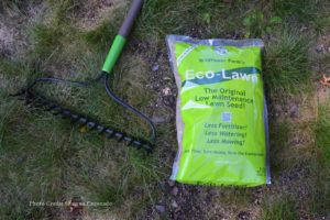 How to Lay Grass Seed
