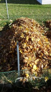 How to Mulch with Fall Leaves