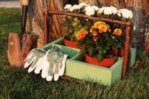 October Garden Checklist