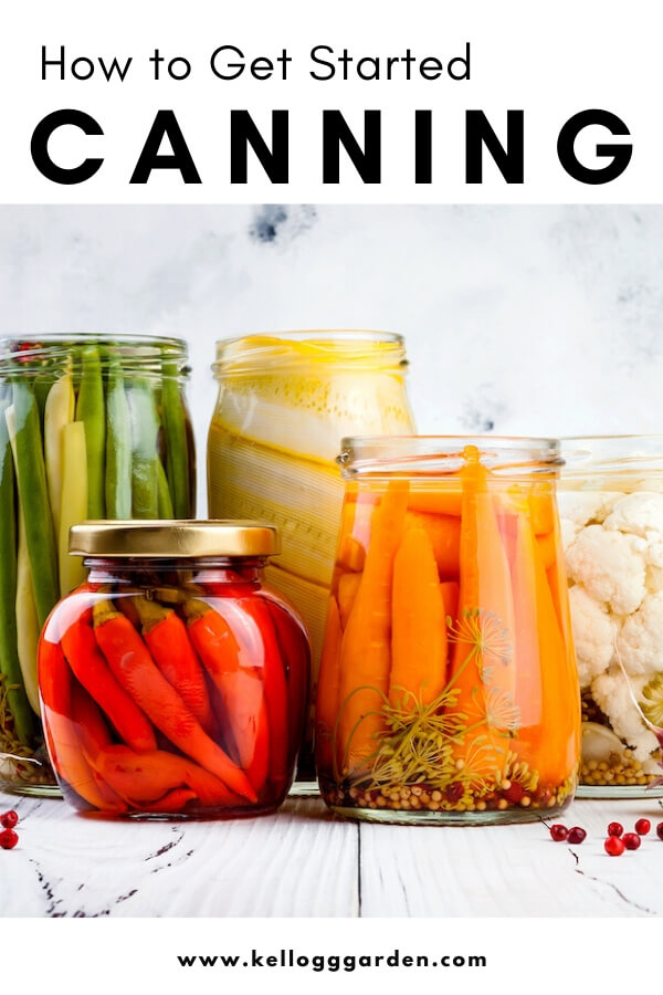 "Various canned vegetables with text, ""How to get started canning"""
