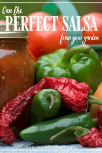 Salsa canning pinterest image