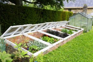 How to use a coldframe for growing herbs