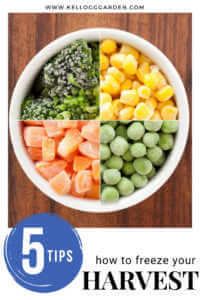 """Frozen vegetables in a bowl with text, """"5 tips, how to freeze your harvest"""""""