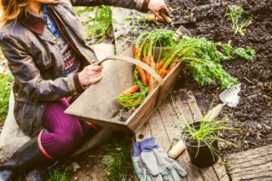 How to Freeze Veggies from your Garden