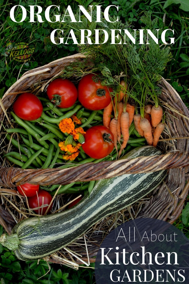 """Basket full of vegetables with text, """"Organic gardening all about kitchen gardens"""""""