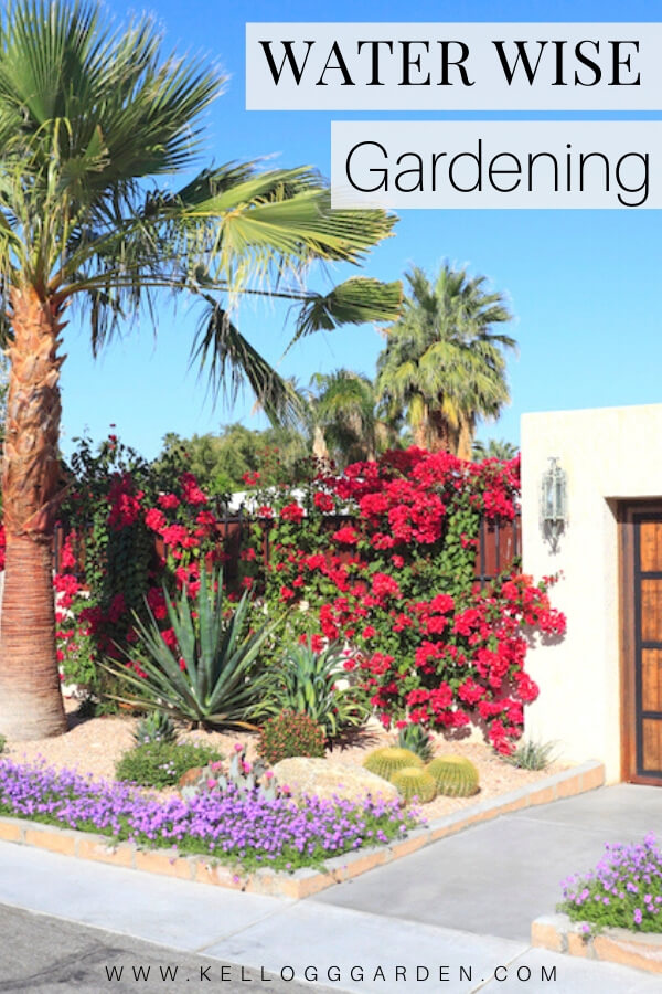 "Desert style landscaping in front of a house with text, ""Water Wise Gardening"""