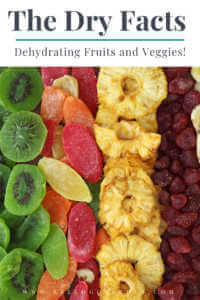 """Rows of dried fruits with text, """"The dry facts, dehydrating fruits and veggies"""""""
