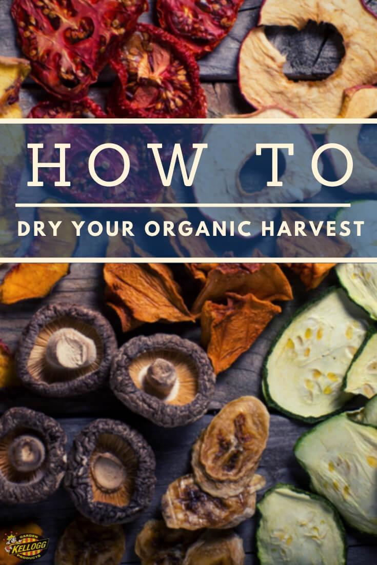 """Flat lay of dried fruits and vegetables with text, """"How Tod ry your organic harvest"""""""