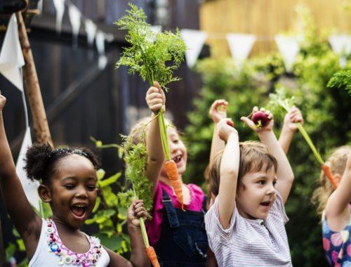 Benefits of a School Garden