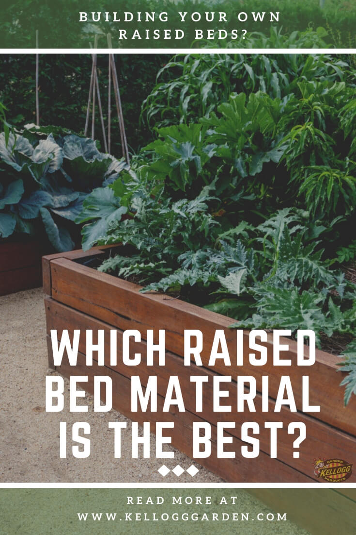 """Raised bed garden with text, """"Which raised bed material is the best?"""