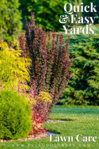 """Colorful shrubs and green gras with text, """"Quick and easy yards, lawn care"""""""