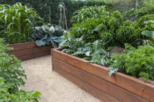 Materials for Raised Beds