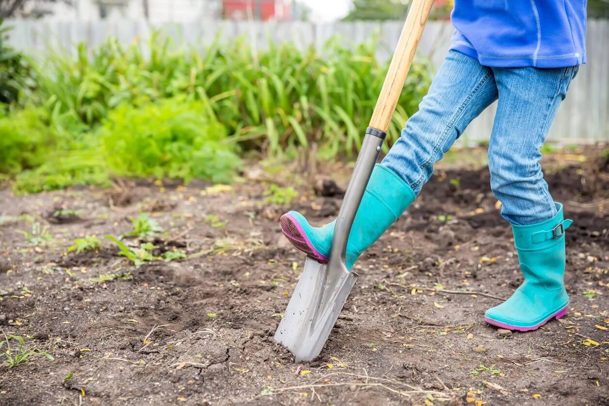 Starting Your Spring Garden