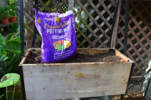 Organic Select Potting Mix with Biochar