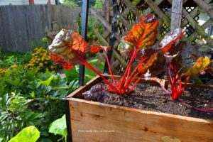 Prepare Containers for Spring