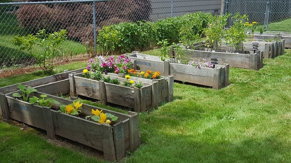 TOP 3 RAISED BED DESIGNS | Kellogg Garden Products