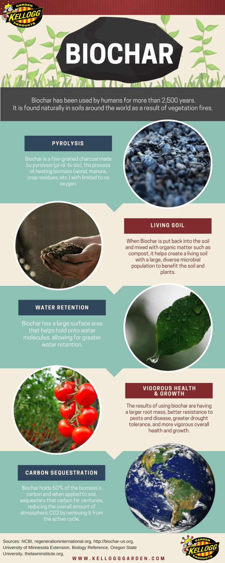 Benefits of Biochar