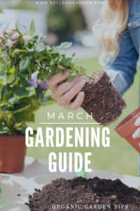 """Woman repotting flowers with text, """"March Gardening Guide"""""""