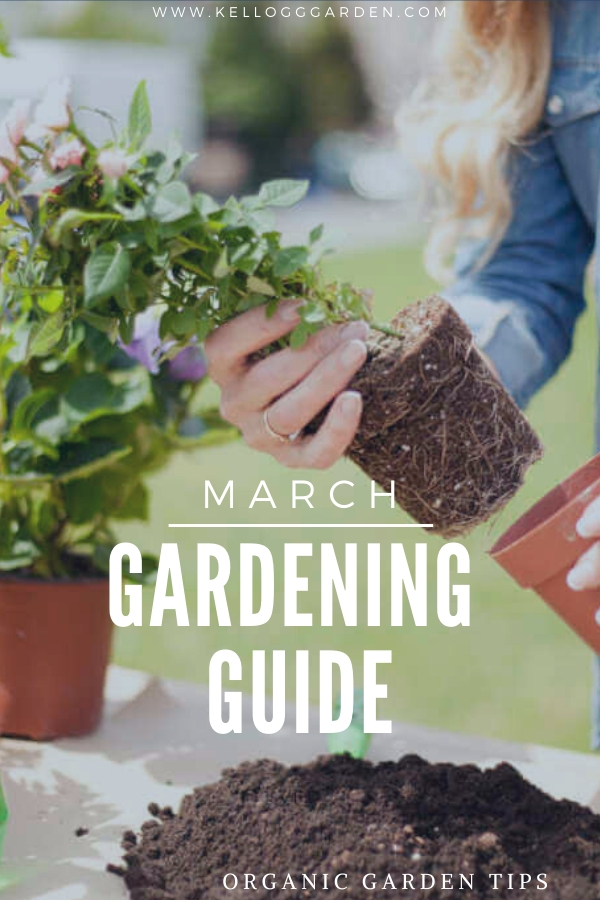 "Woman repotting flowers with text, ""March Gardening Guide"""