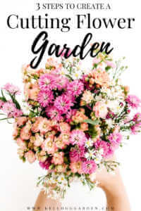 "Flower bouquet against white background with text, ""3 steps to create a cutting flower garden"""
