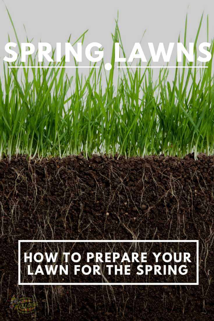 Grass and roots spring lawn prep pinterest image