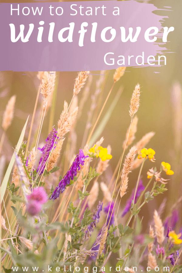 purple and yellow wildflower pin image