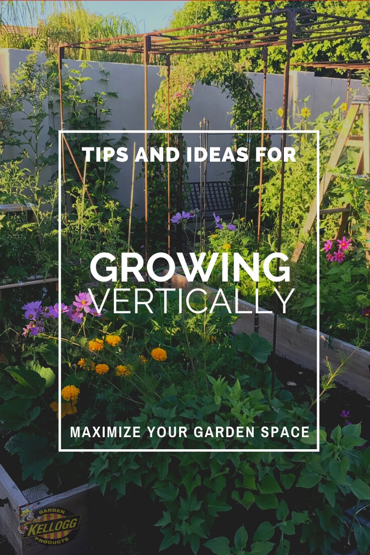 """Vertical flower garden with text, """"Tips and ideas for growing vertically to maximize your gardens space"""""""