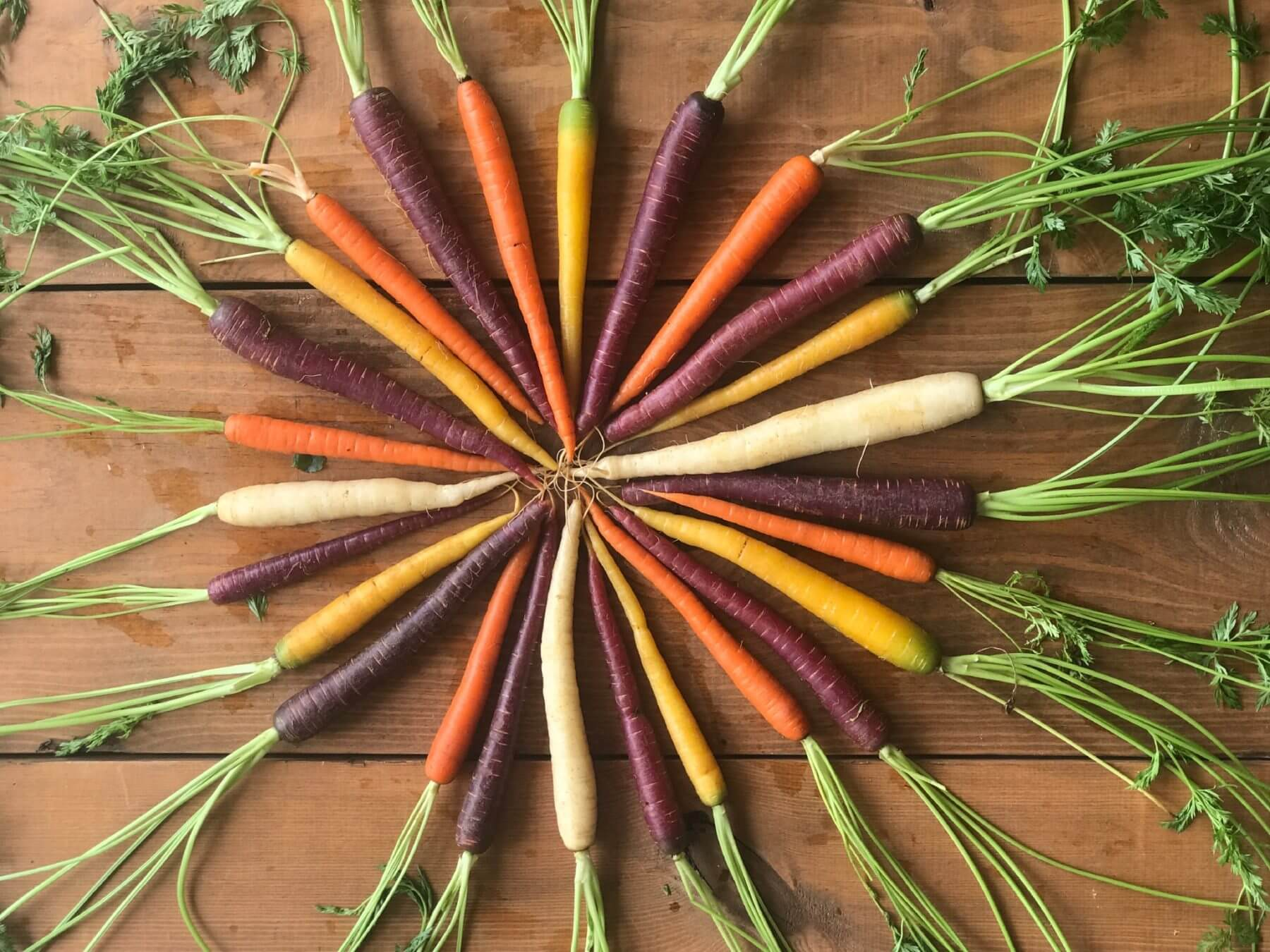 different kinds of carrots in a circle