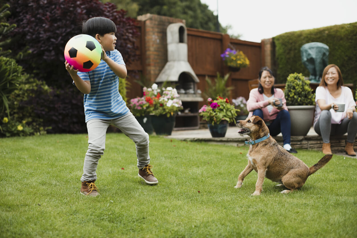 Boy throwing soccer ball with dog in yard