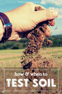 "Hand holding and dropping soil with text, ""How and when to test soil"""