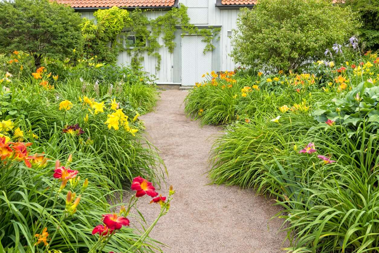 3 Tips For Pruning Your Perennials Kellogg Garden Products