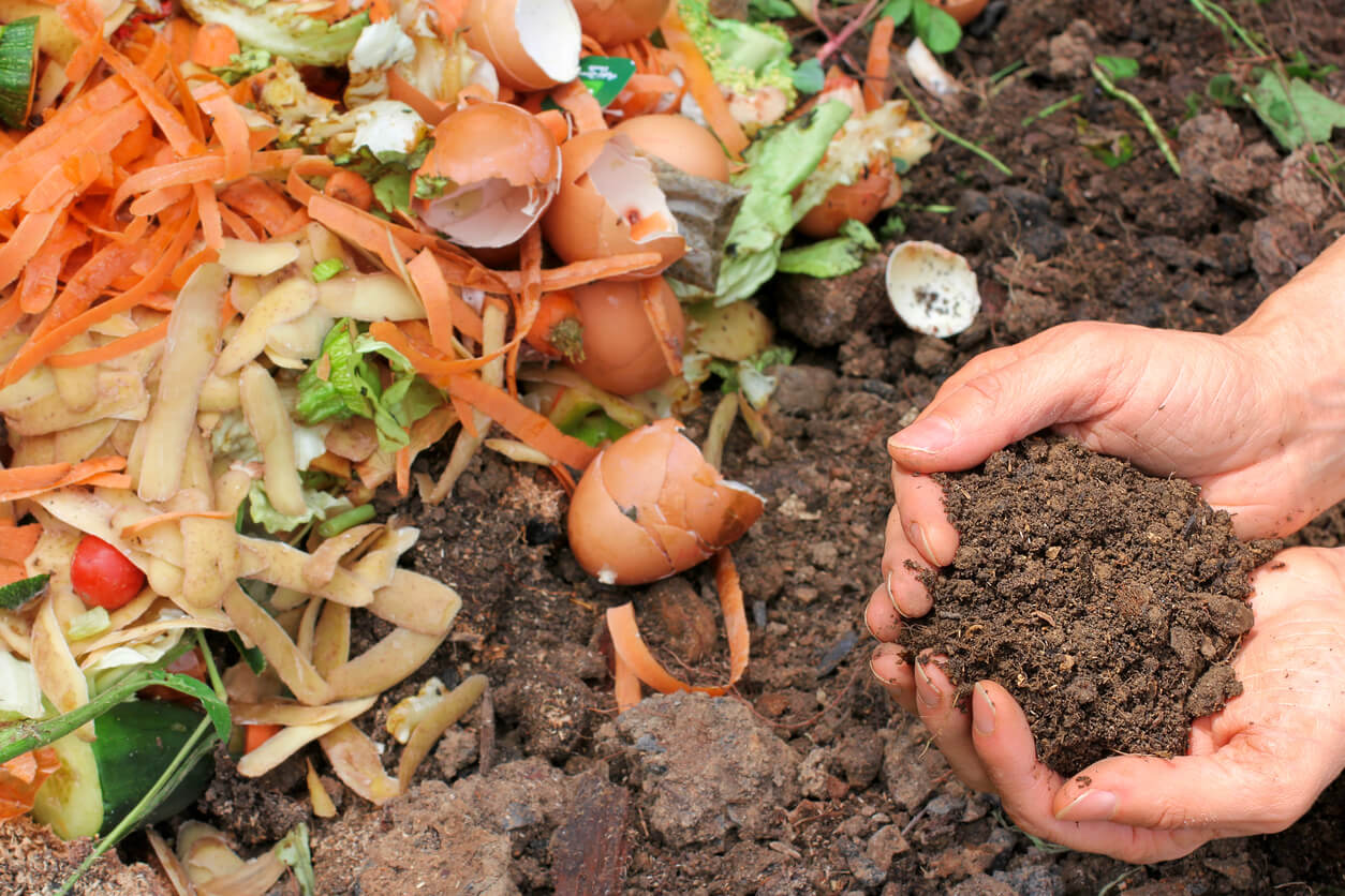 Warm weather composting
