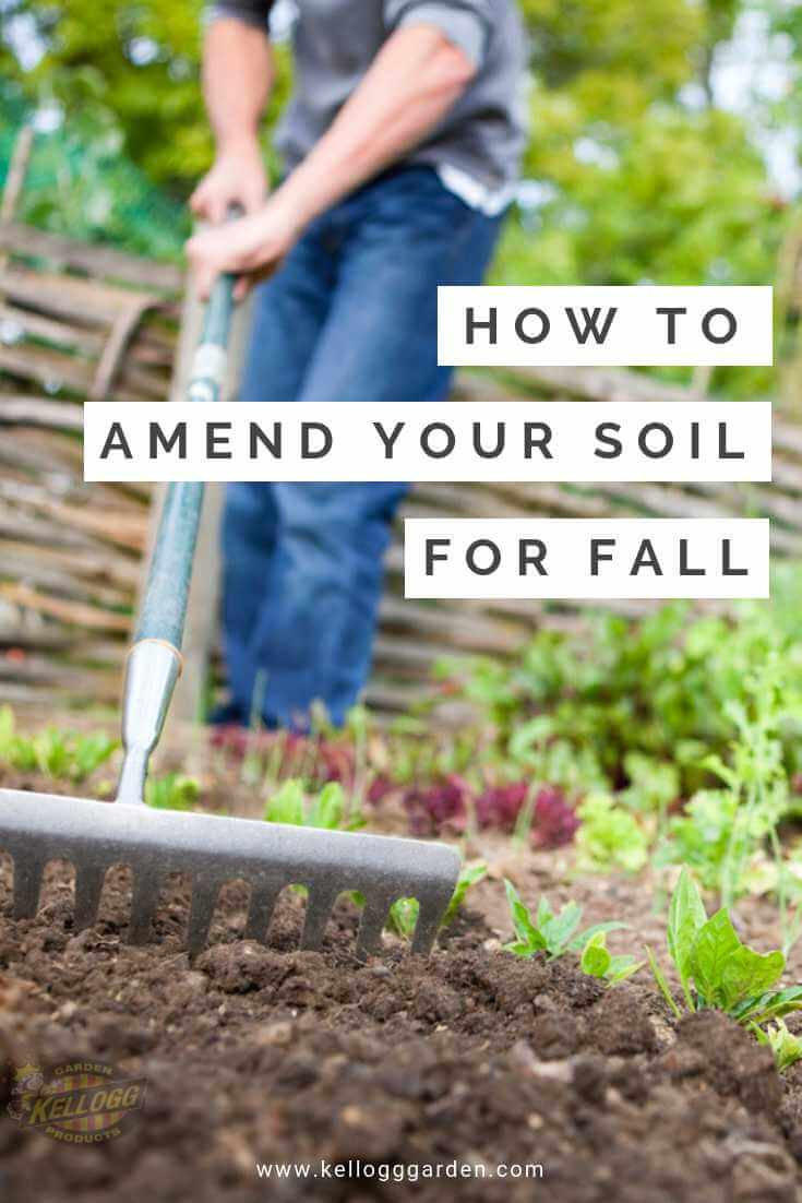 Amending your soil for fall