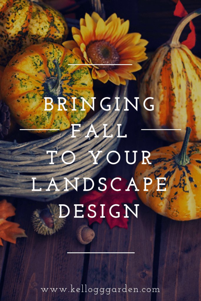 Bringing fall to your garden (2)