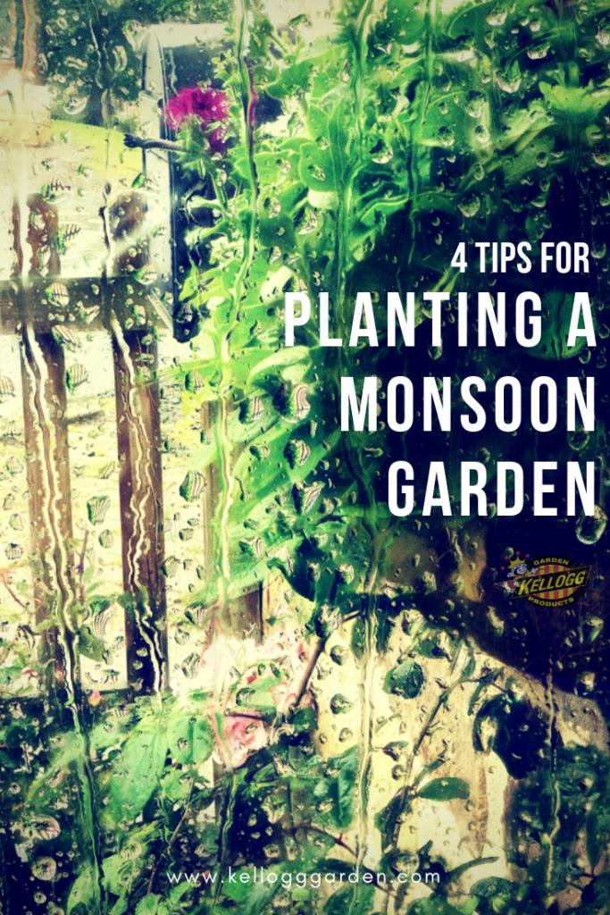 Planting a Monsoon Garden
