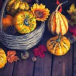 Bringing fall to your garden design