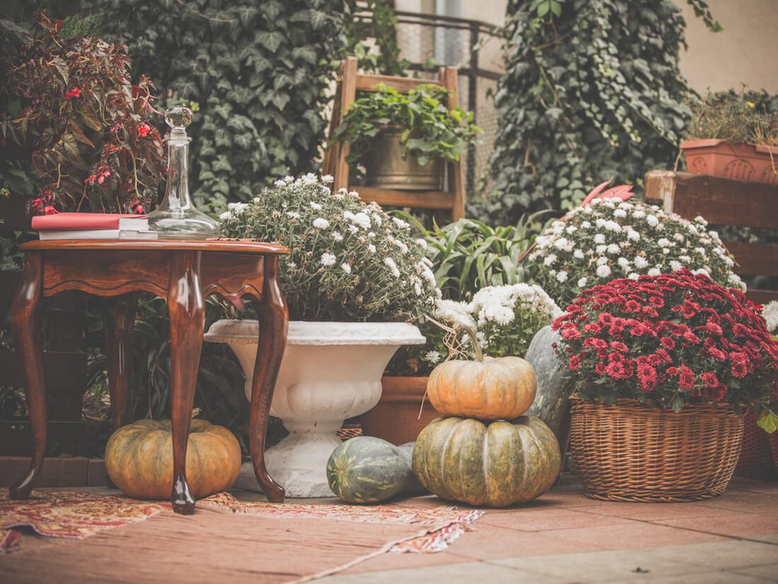 pumpkins on deck