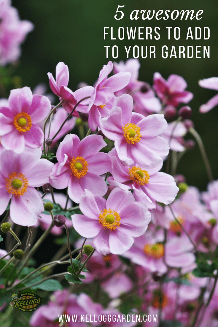 5 Autumn Flowers Pin