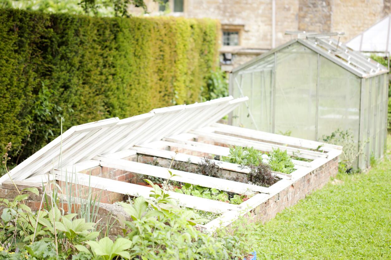 Cold frame over garden bed