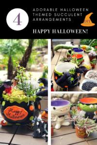 Halloween succulent design