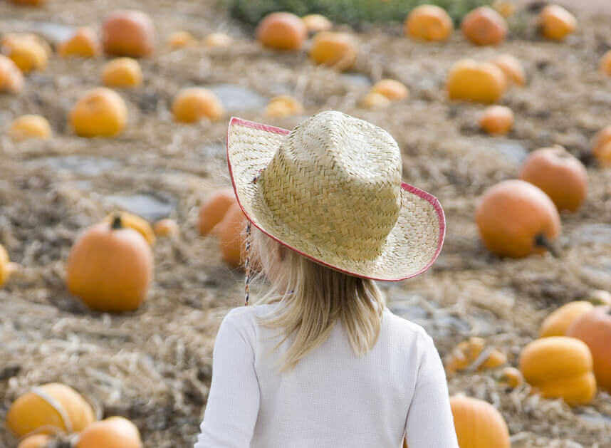 Little girl with cowgirl hat on walking through a pumpkin patch.