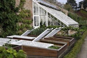 Preparing garden for cold weather