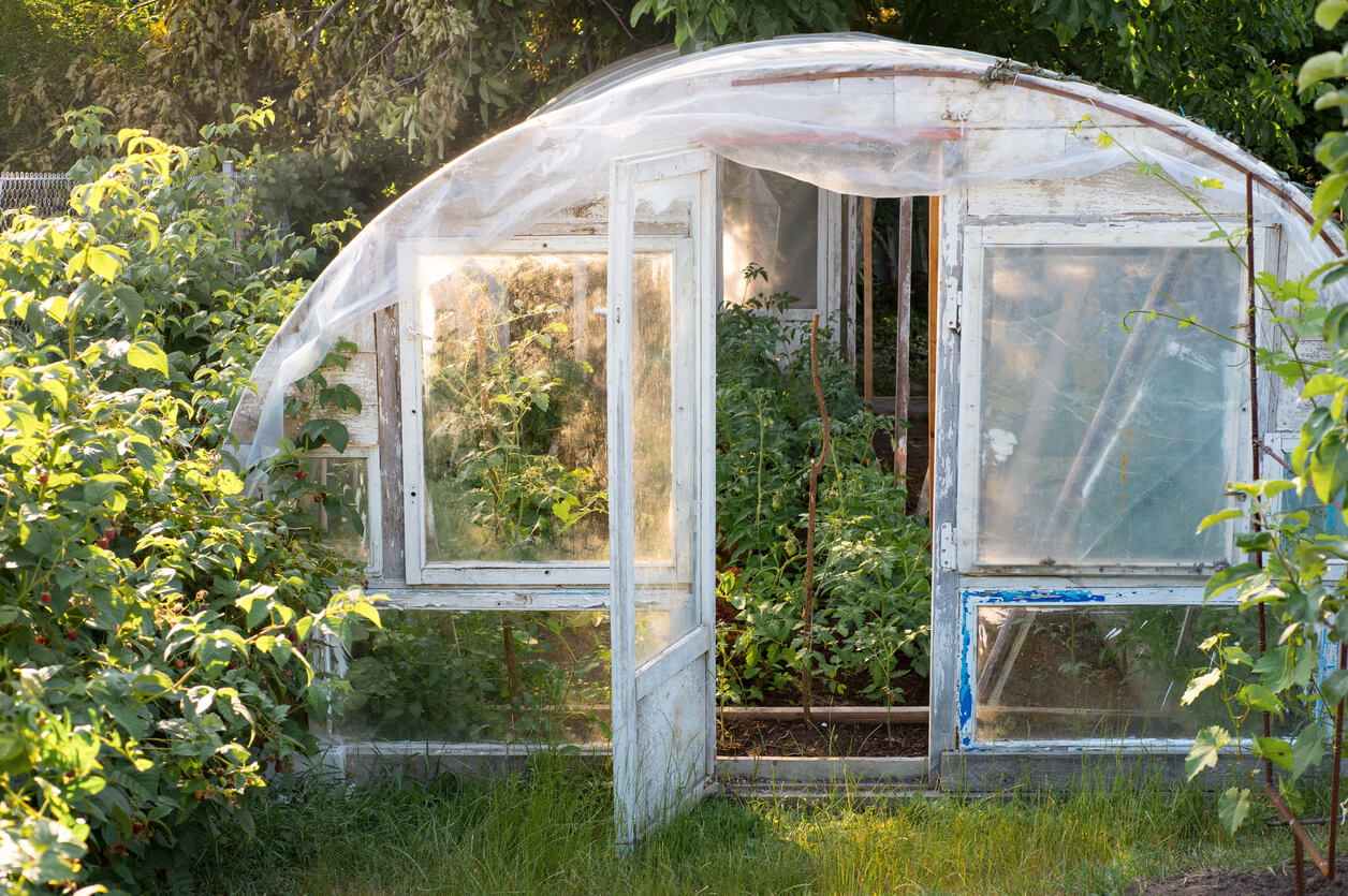 Prepping greenhouse for cold weather