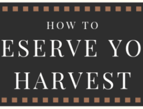 Preserve Organic Harvest