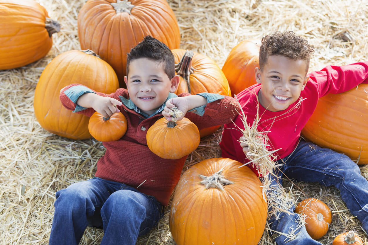 Two multi-ethnic 5 year old boys playing together in a pumpkin patch. They are looking up at the camera, smiling.