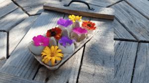 reusing in the garden
