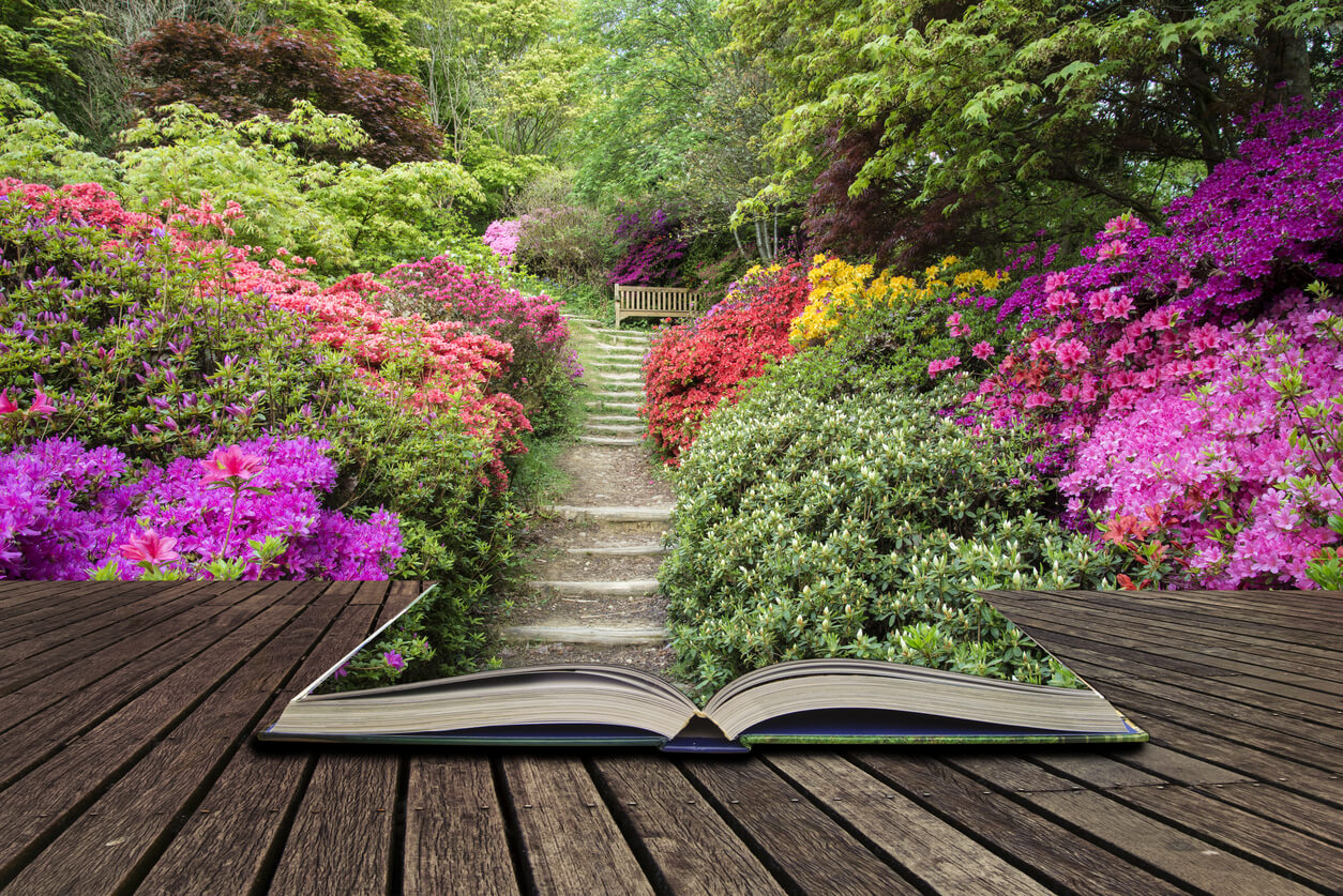 Book opening to a vibrant garden