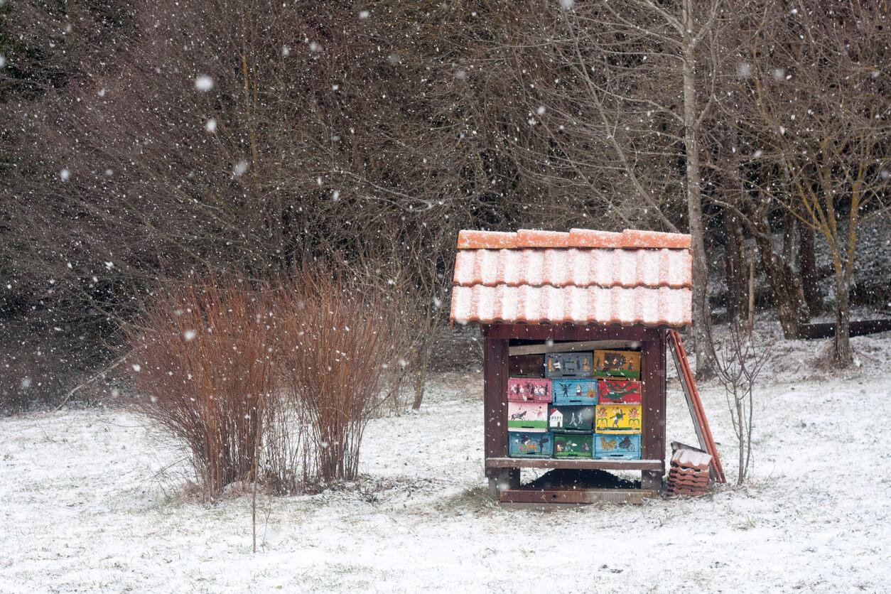 Snowing beehive