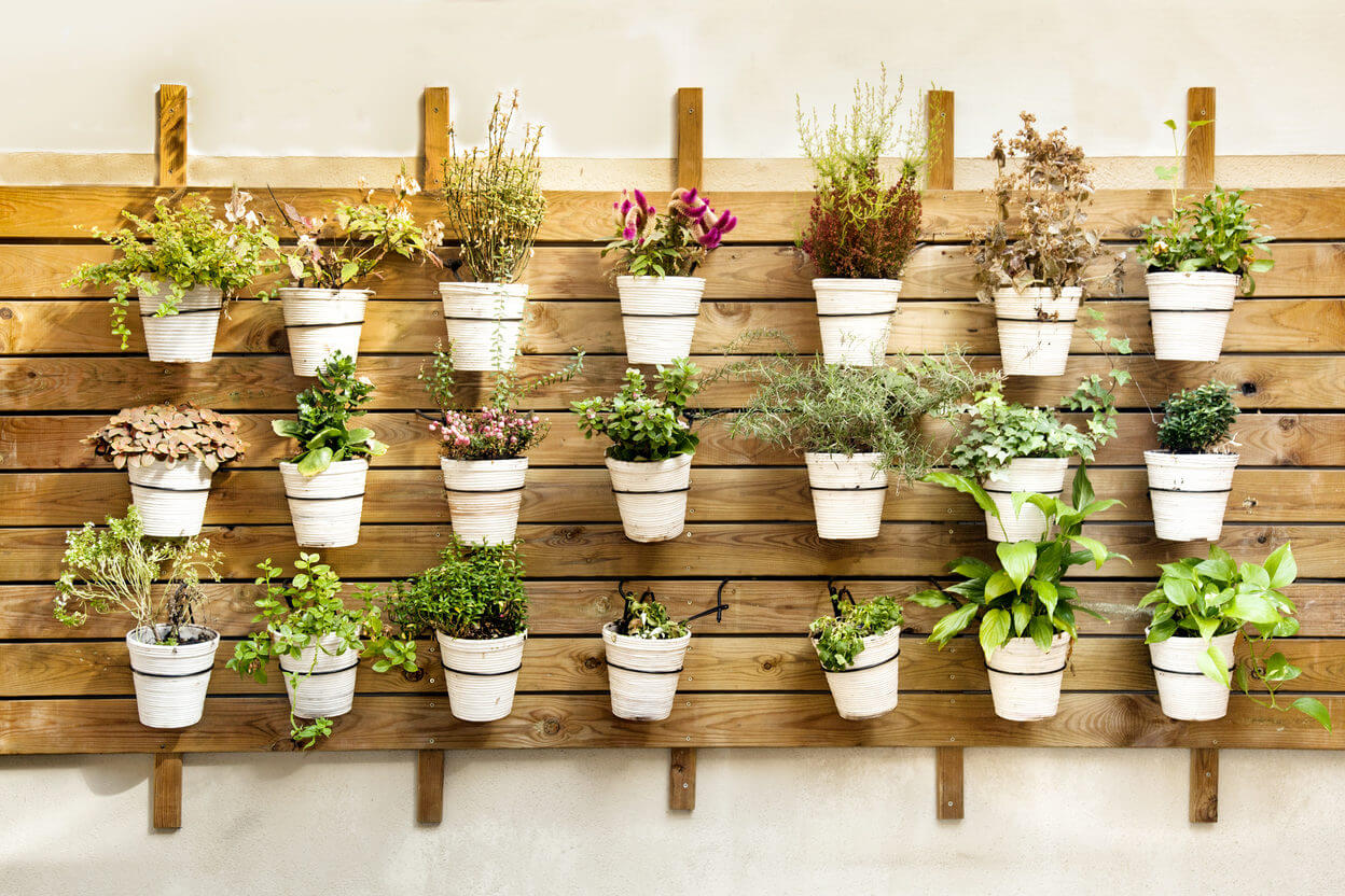 Flower pots hanging in a wall. Decor mount done with recycled wood pallets.
